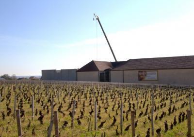 Extension d'une cuverie au domaine Denis Mortet à Gevrey-Chambertin