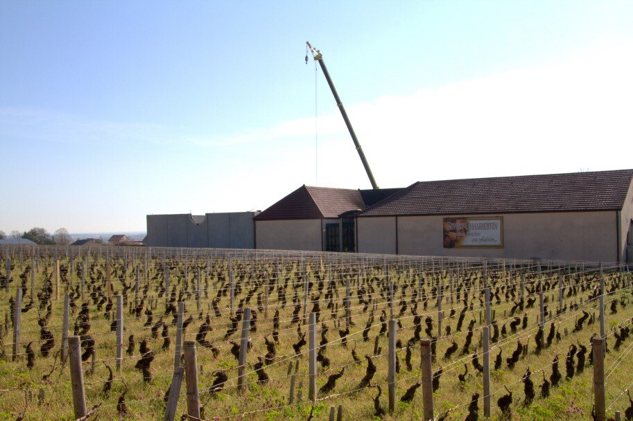 Extension d'une cuverie au domaine Denis Mortet à Gevrey-Chambertin